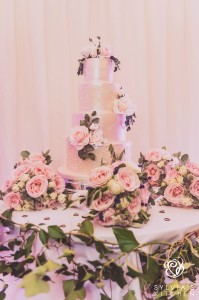 SylviasKitchen_WeddingCakes_Michelle_TeriVPhotography (23)